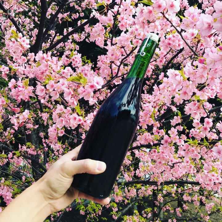 お花見には、生ワインがよく似合う。