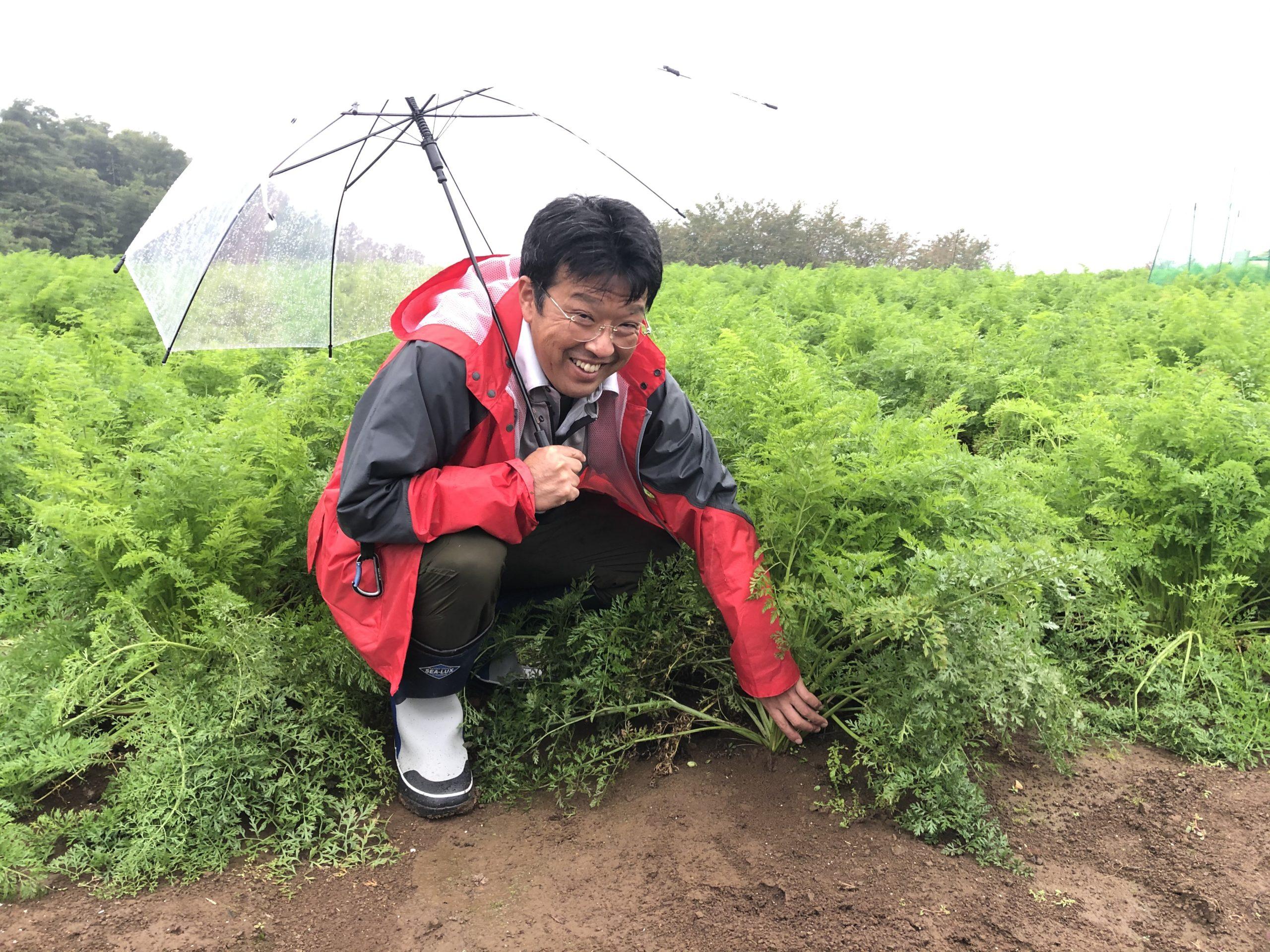大塚にんじん農家_画像